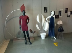 Shop Window Displays
