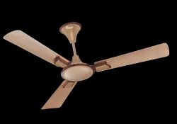 Daffodil Ceiling Fan Gel Gold