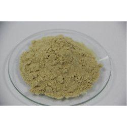 Protein Hydrolysate Powder