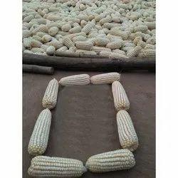 A Grade White Corn