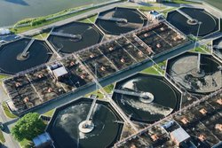 Bacteria To Treat Organic Waste In Waste Water Treatment