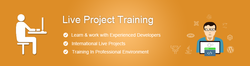 Live Technical Project Training