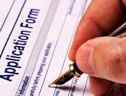 Self & Business Work Online Form Filling, 20