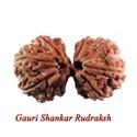 Gauri Shankar Rudraksh Beads