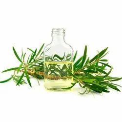 Natural Essentia Cajuput  Oil