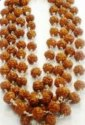 Kesar Zems5 Five Face - Panch Mukhi Rudraksha Mala - for Stress Relief