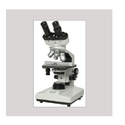 双目显微镜