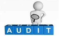 Business and Financial Services Audit