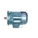 Gear Type Motors