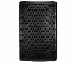 12 Two Way Passive Speaker