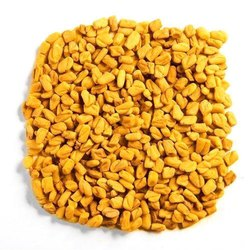 Yellow Fenugreek Seeds, Packaging Type: PP Bag