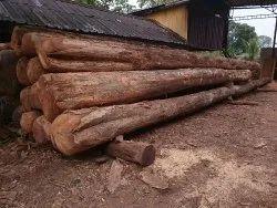 Kerala Teak  Wood