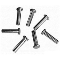 Stainless Steel Rivet