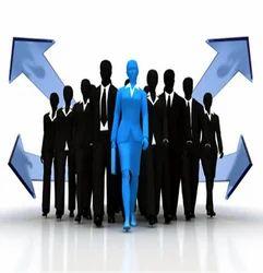 Development Consultancy Services