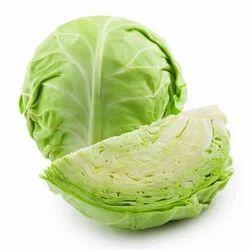 Fresh Cabbage, Packaging: Carton
