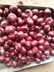 A Grade Cold Storage Rose Onion, For Food, Packaging Size: 25, 50 Kg