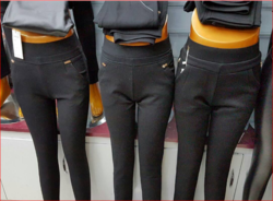 Ladies Fashion Pants