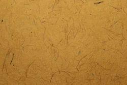 Coconut Coir Paper