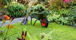 Gardening Horticulture Services