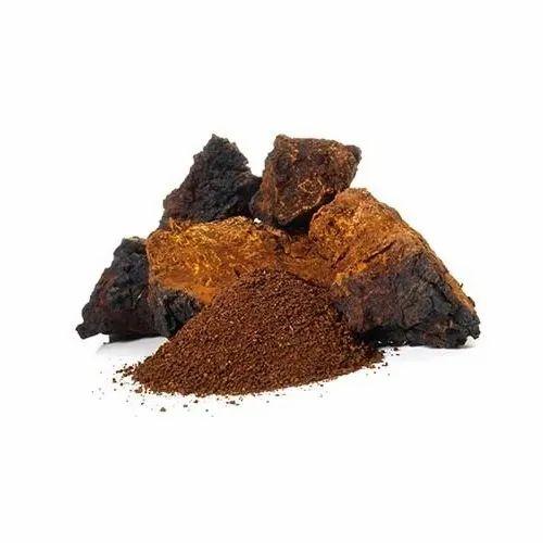 Herbo Nutra Brown Chaga Mushroom Extract, Packaging Size: 1 Kg, Packaging  Type: Hdpe Drum, Rs 100 /kilogram | ID: 17397507991