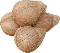Whole Brown Coconuts