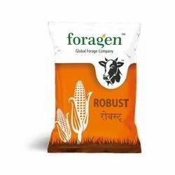 Fodder Maize Seeds