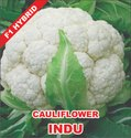 F1 Hybrid Cauliflower Seeds, Packaging Type: Packet, Packaging Size: 10 Gram