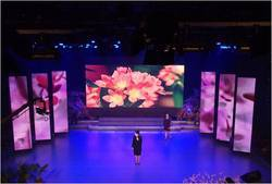 Curtain Mesh LED Display