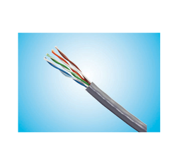 Cat 6 LAN Cable 305m