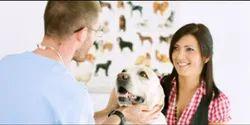 Animal Healthcare
