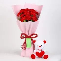 Gift Pack Red Carnation With Teddy