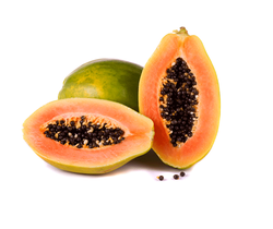 Papaya Extract 10:1