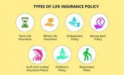 Term And Endowment Life Insurance
