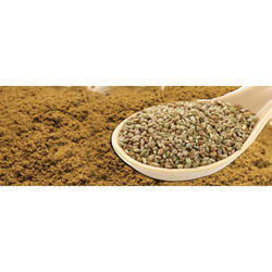 Ajwain Powder, 100 gm to 1 Kg