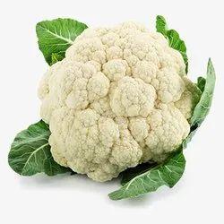 A Grade Green Fresh Cauliflower, Gunny Bag, 10 Kg