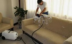 Herbal Cotton Sofa Cleaning Services(Fabric), For Home,Reception & Hotels
