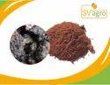 Shilajit, Asphaltum Extract