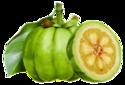 Garcinia Cambogia Fruit Capsules 400mg