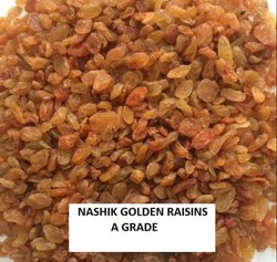SNEHAN Golden RAISINS, Packaging Type: 10kg Carton, Packaging Size: 10 Kg