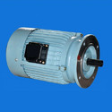 Paddle Wheel Aerator Motors