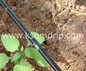 Vegetable Crops Drip Tape
