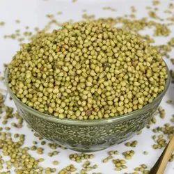Green Organic Coriander Seed