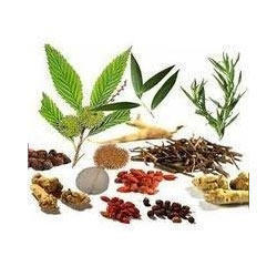 Herbal Testing Services