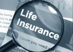 Life Insurance, 1 Year