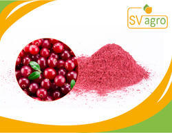 Natural Plant Source Cranberry Extract