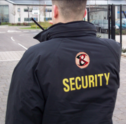 Industrial Security Audit Services