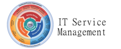 IT Service Management Consultant