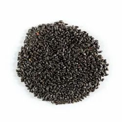 Stone Age Basil Seeds, Packaging Size: 25 Kgs, Packaging Type: Carton Box