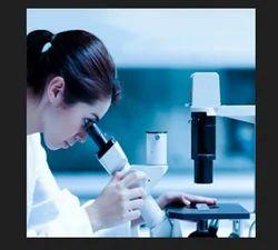Allergy Treatment Services