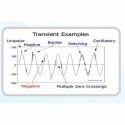 Transient Study Services, Maintenance Audit